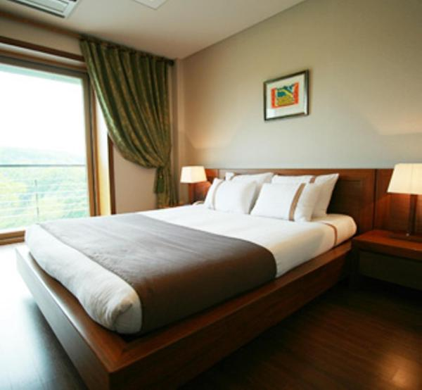 Zdjęcia hotelu: Hantan River Spa Hotel, Cheorwon