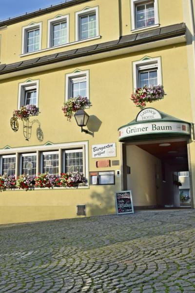 Hotelbilleder: Hotel Grüner Baum, Naila