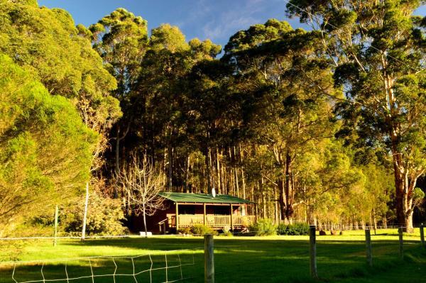 酒店图片: Diamond Forest Farm Stay, Manjimup