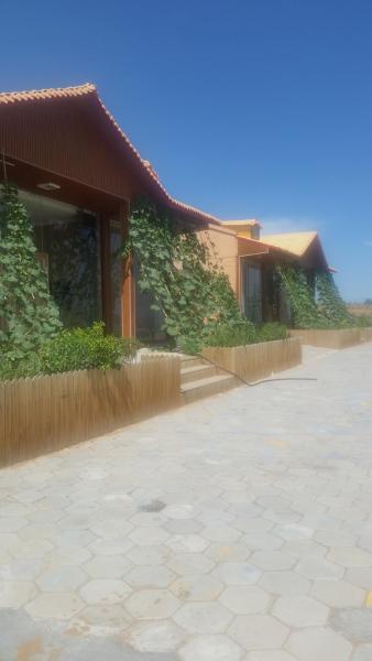 Hotel Pictures: Zhongwei Shapotou Shaguan Garden, Zhongwei