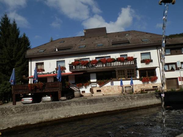 Hotel Pictures: Landhotel Löwen, Blumberg