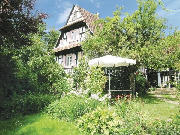 Hotel Pictures: Holiday home Rue du Herrenberg, Birlenbach