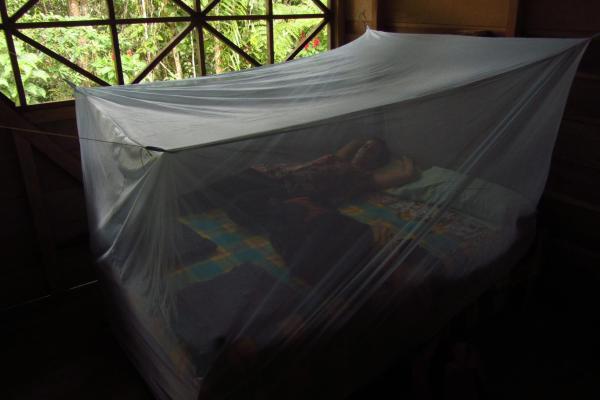 Hotel Pictures: Vista Hermosa Lodge, Puerto Misahuallí