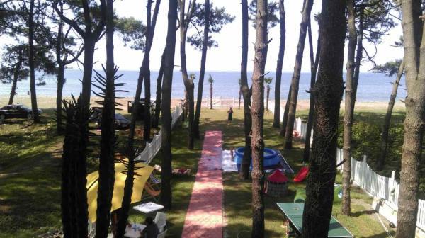 Φωτογραφίες: Guest House Zuka, Grigoleti