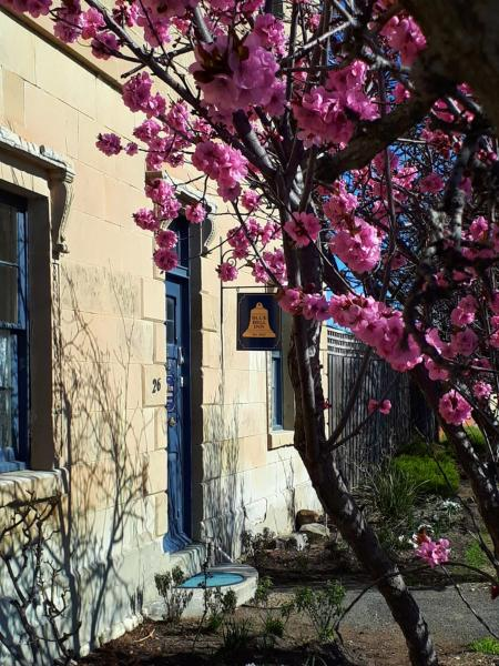Foto Hotel: Blue Bell Inn, Sorell