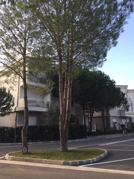 Zdjęcia hotelu: Primavera Residence, Maminas