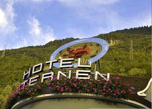 Hotel Pictures: Hostellerie Sternen, Fluelen
