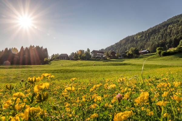 Φωτογραφίες: Gasperhof, Dellach