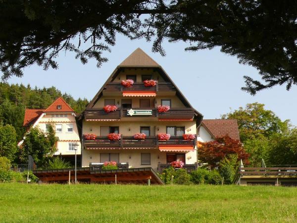 Hotel Pictures: Hotel Pension Sonnenstube, Baiersbronn