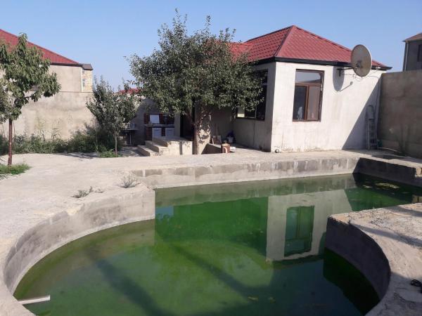Foto Hotel: Lotus Guesthouse, Fatmayı