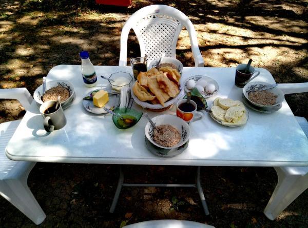 Φωτογραφίες: Guest House Iaraji, T'ianet'i