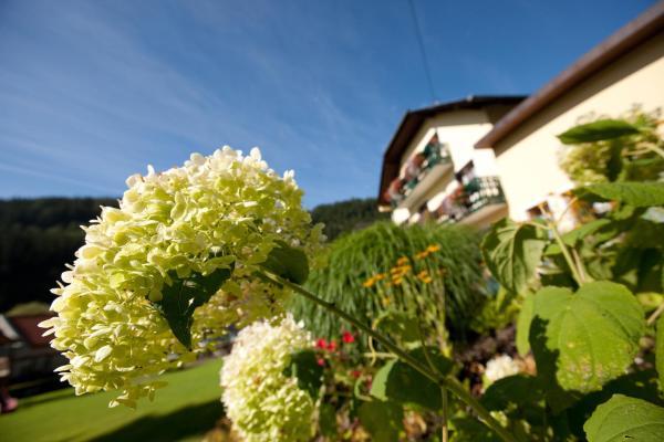 酒店图片: Landhotel Mönichwalderhof, Mönichwald