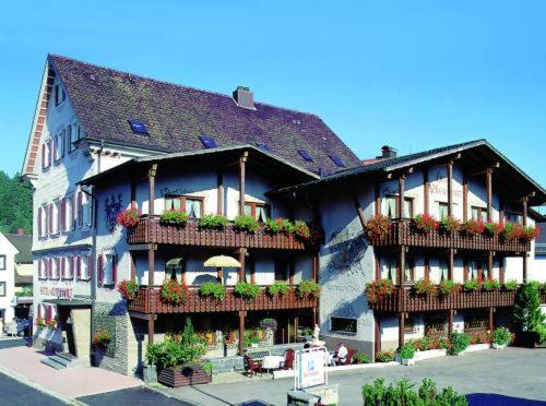 Hotel Pictures: Adler Post, Lenzkirch