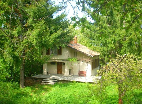 Zdjęcia hotelu: с. Бойково, Boykovo