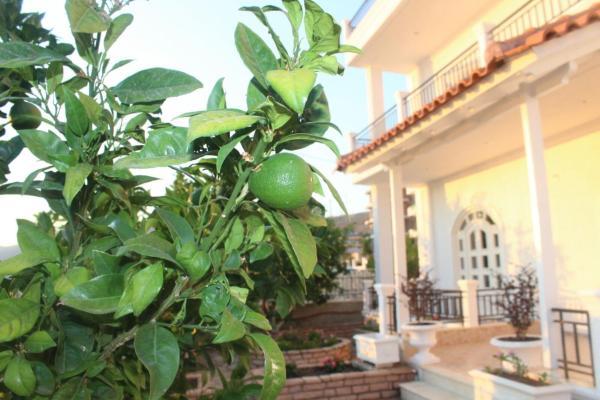 Foto Hotel: Villa Sildi, Gjashtë