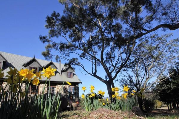 Фотографии отеля: The Great House BnB, Buckland