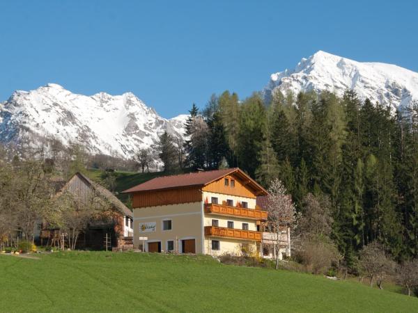 Photos de l'hôtel: Grüblerhof, Spital am Pyhrn