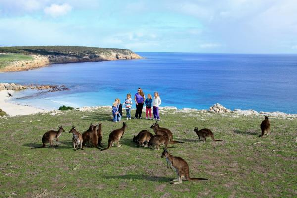 Hotelbilleder: Waves & Wildlife Cottages Kangaroo Island, Stokes Bay