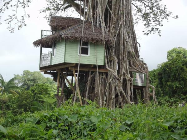 Two-Bedroom Treehouse