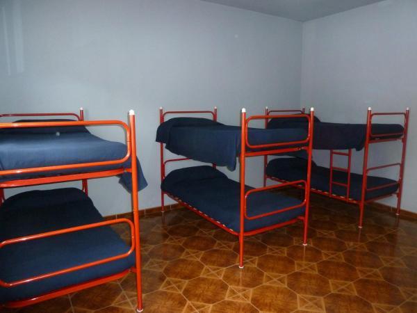 Bunk Bed in 6-Bed Dormitory Room