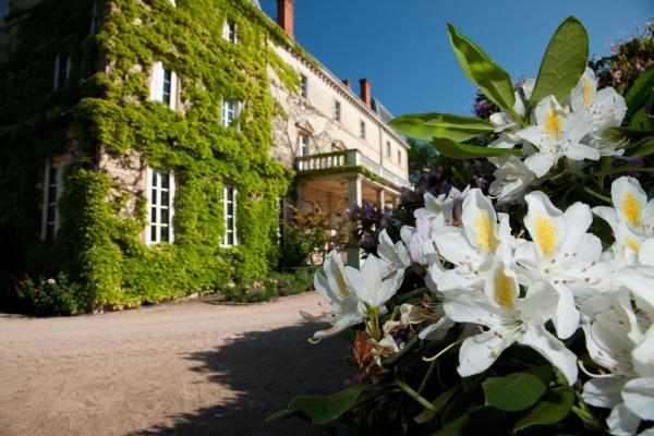 Hotel Pictures: Château de Bellevue, Villié-Morgon