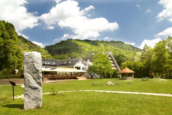 Hotel Pictures: Hotel Krainerhütte, Baden