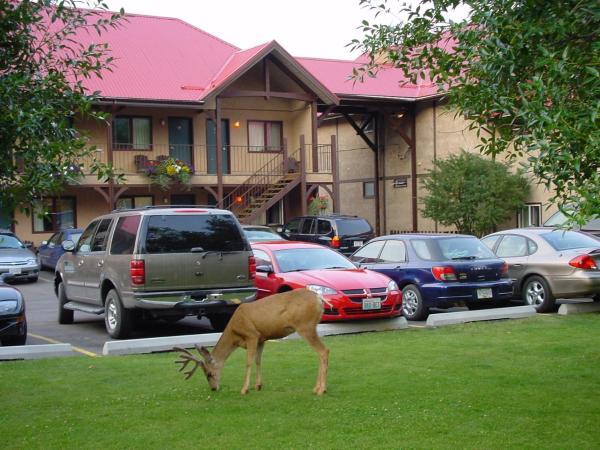 Hotel Pictures: Aspen Village, Waterton Park