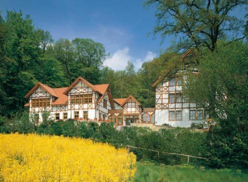 Hotel Pictures: Ringhotel Der Waldkater, Rinteln