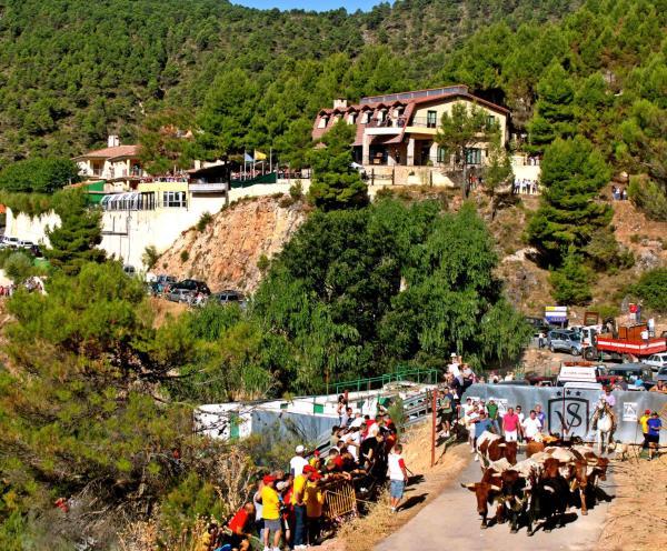 Hotel Pictures: Hotel-Spa VegaSierra, Bogarra