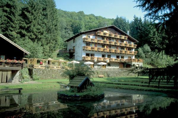 Hotel Pictures: Wolffhotel, Kopp