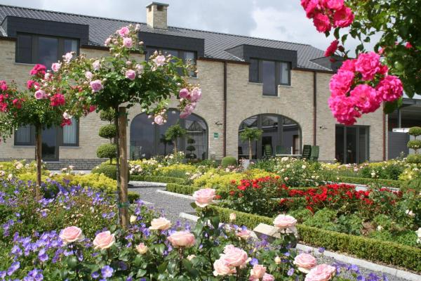 Foto Hotel: B&B La Vie En Roses, Moorsel