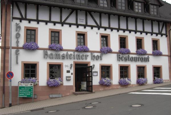 Hotel Pictures: Ramsteiner Hof, Ramstein-Miesenbach