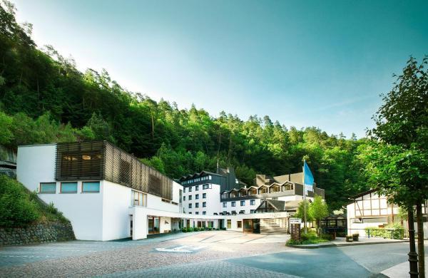 Hotel Pictures: , Höhr-Grenzhausen