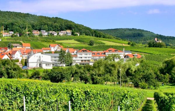 Hotelbilleder: Hotel Südpfalz-Terrassen, Gleiszellen-Gleishorbach