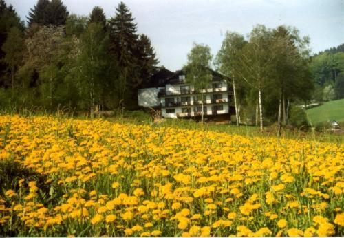 Hotel Pictures: Birkenhof, Wald-Michelbach