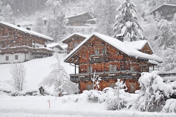 Hotel Pictures: Ferienhaus Steiner, Wald im Pinzgau