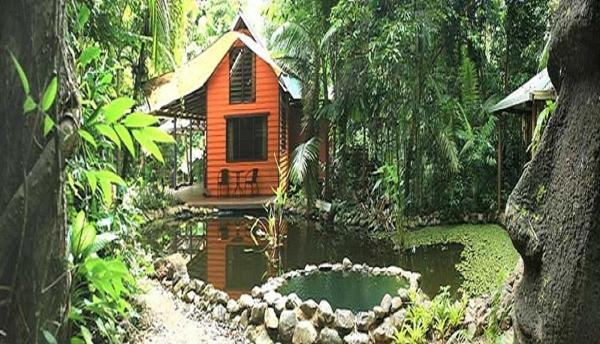 Fotografie hotelů: Rainforest Hideaway, Cape Tribulation