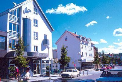 Hotel Pictures: Hotel Restaurant Maître, Wernau