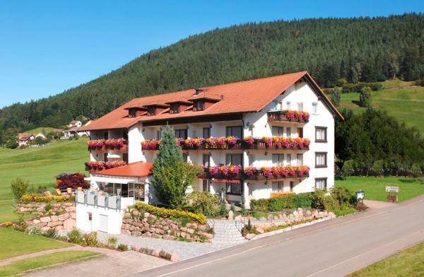 Hotel Pictures: Hotel Birkenhof, Baiersbronn