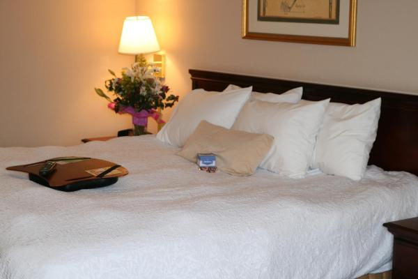 King Room with Roll-In Shower -Disability/Hearing Accessible-Non-Smoking