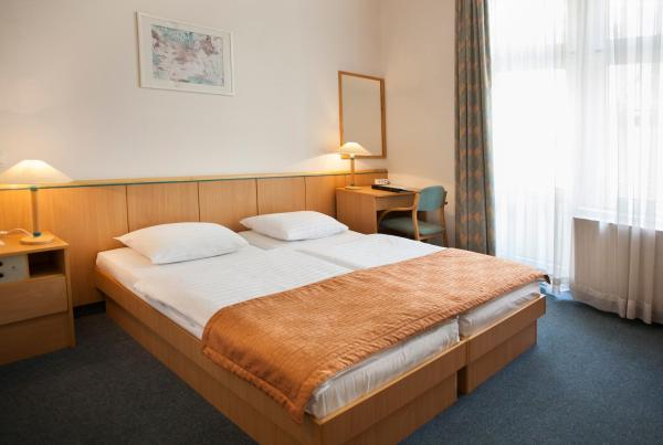 Double or Twin Room with Danube View