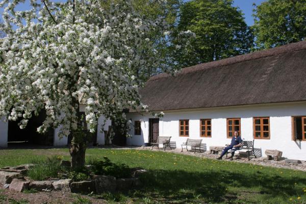 Hotel Pictures: Springbakgaard Bed & Breakfast, Nibe