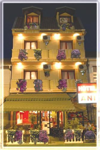 Hotel Pictures: Hotel Ani, Skopje