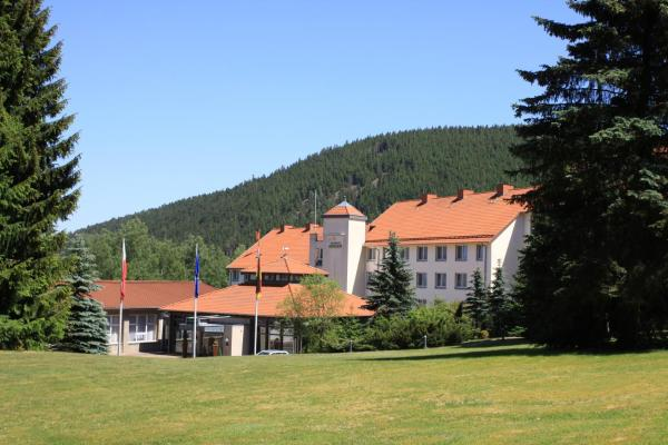 Hotel Pictures: Waldhotel Berghof, Luisenthal