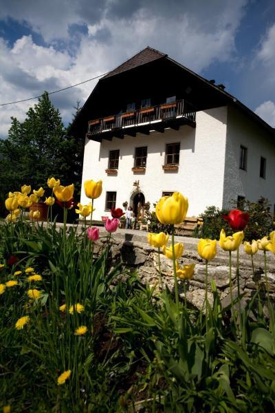 ホテル写真: Ferienhof Rotbuchner, Vorderstoder