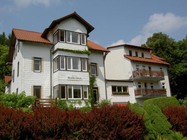 Hotelbilleder: Pension Waldesblick, Friedrichroda