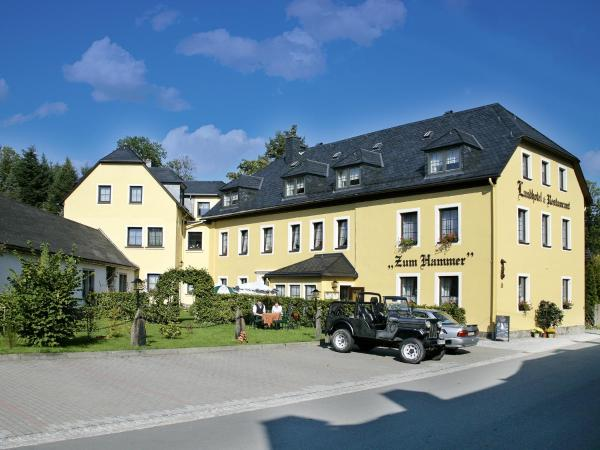 Hotelbilleder: Landhotel Zum Hammer, Tannenberg