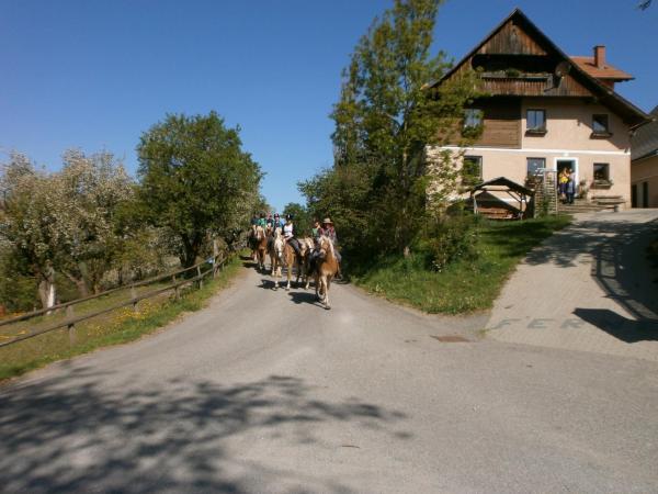 ホテル写真: Reitbauernhof Ferner, Mühlen