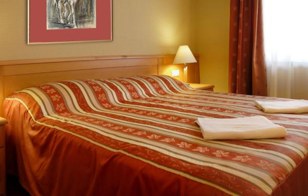 Double or Twin Room with Wellness Access