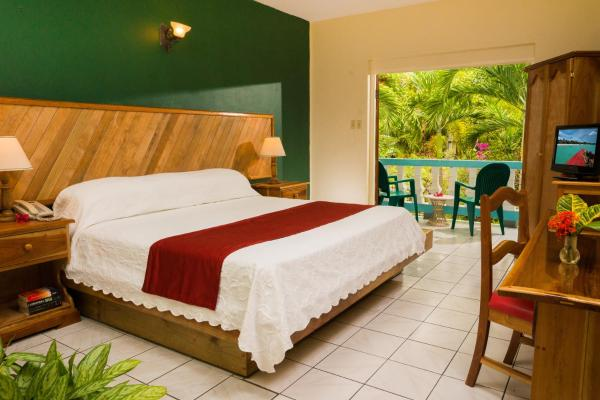 Superior King or Double Room with Garden View